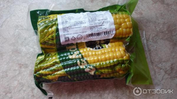 Выращиваем кукурузу в Сибири Мой сад и огород