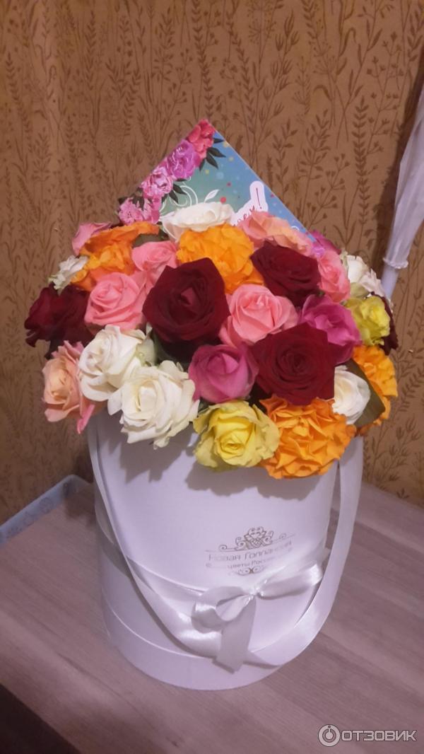 Доставка цветов новая голландия отзывы