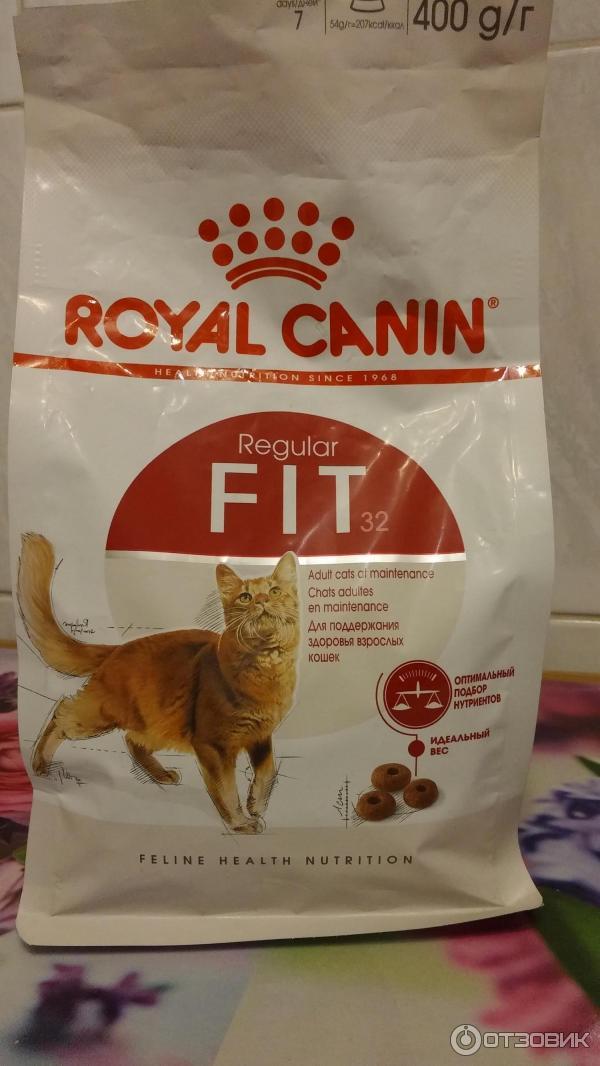 Разрекламировать кошачий корм баннерная реклама размещение рекламы в интернете