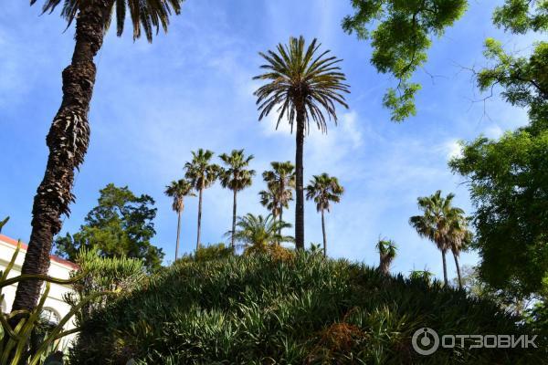 Jardim Botânico da Universidade de Lisboa - Ботанический сад ...   400x600