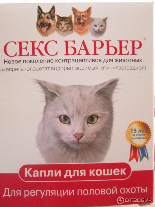Секс барьер для кошек отравление