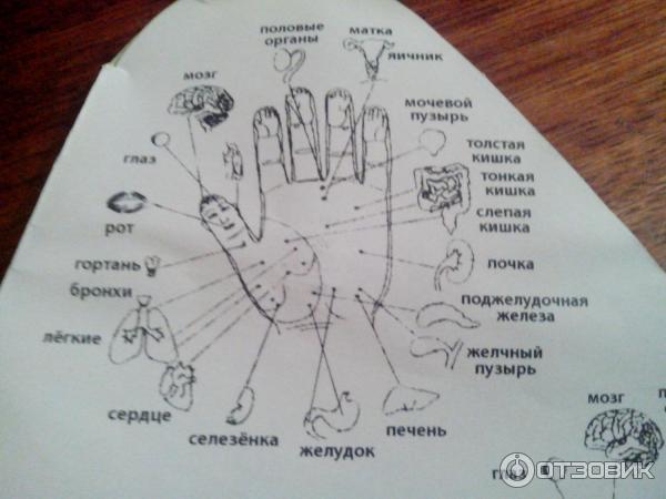 Массажный шарик су-джок инструкция в картинках