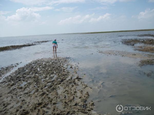 проявления азовское море город ейск грязевое озеро фото подготовили для вас