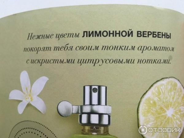 Ogromny Отзыв о Туалетная вода Avon Scent Essence lime verbena   По началу SY45