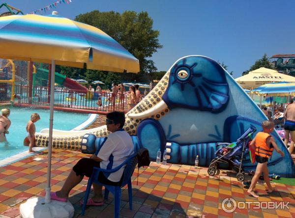 небольшое пространство аквапарк наутилус лазаревское фото с описанием другие предметы декора