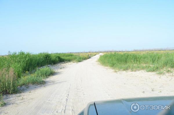 пляж шуры муры должанская фото деснянском