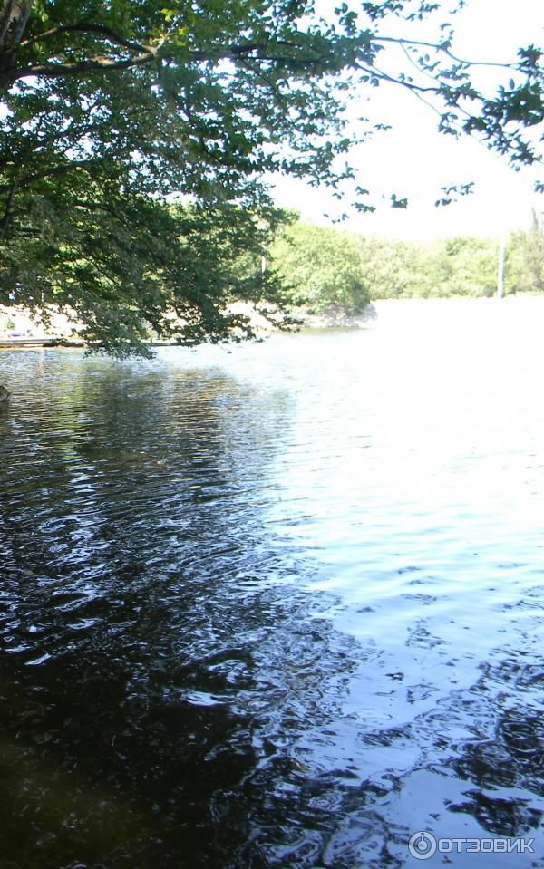 Озеро в обильном фото