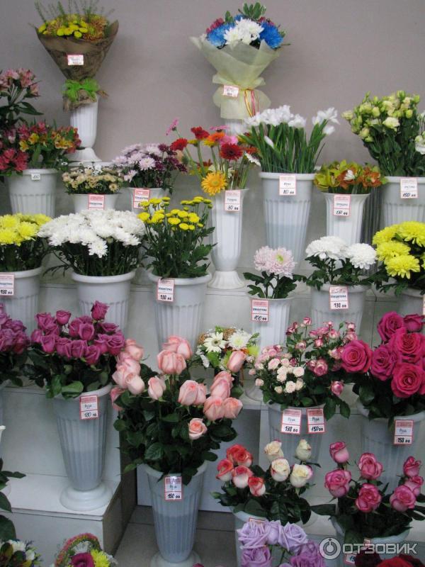 Дешевые цветы адреса магазинов