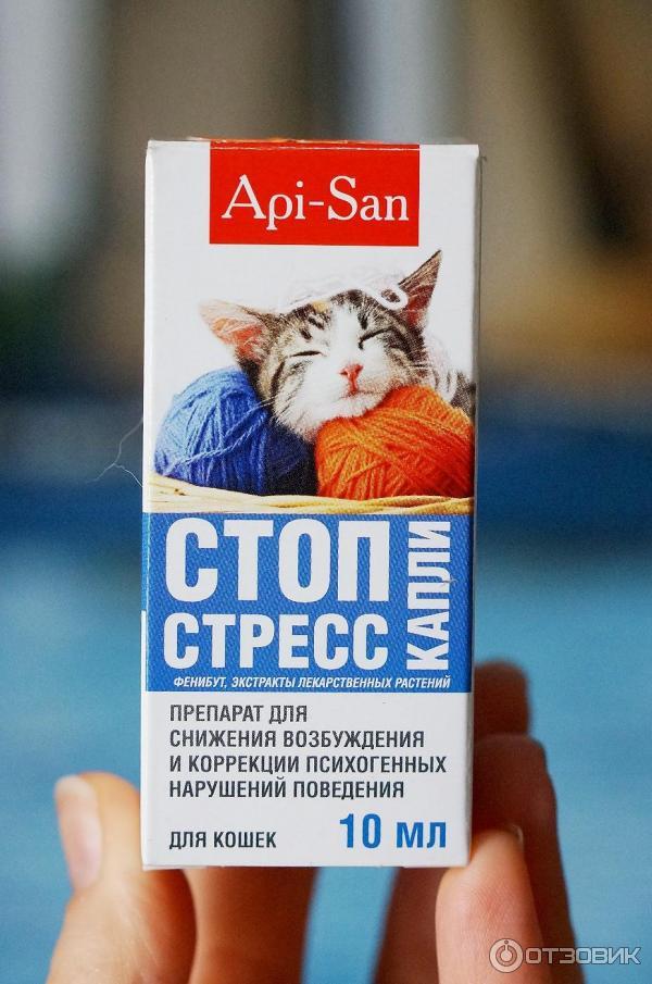 https://i5.otzovik.com/2016/09/07/3737186/img/76589240.jpeg