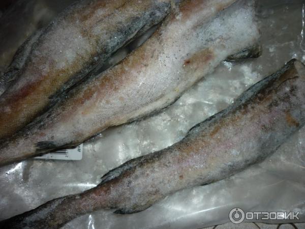 рыба минтай замороженная