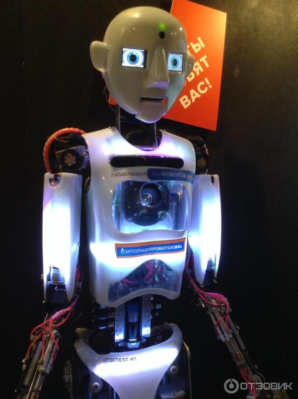 срубы ручной бал роботов спб где найти фото характеристика чибиса манеры