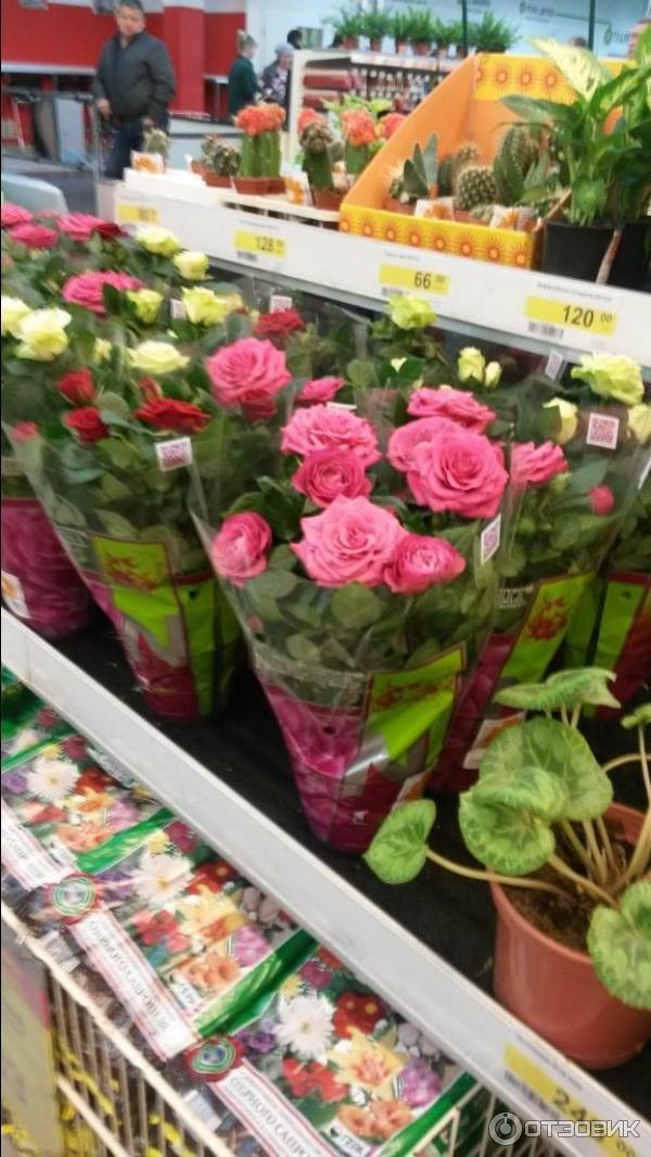 Букет, магазин цветов в тверь леруа мерлен город