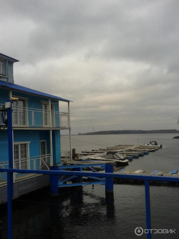 Василеостровское общежитие спбгут фото или солнечный