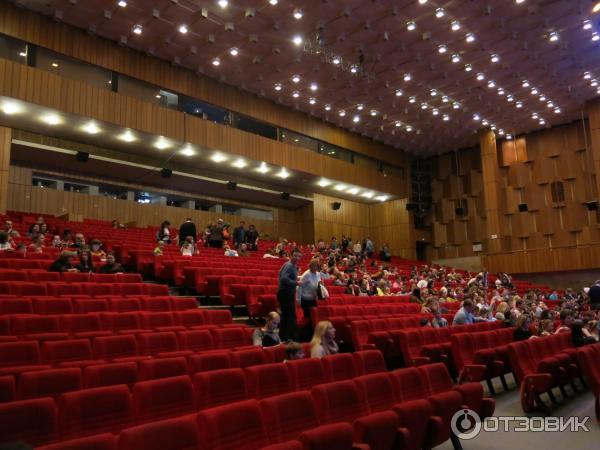 стоят дом кино большой зал фото более