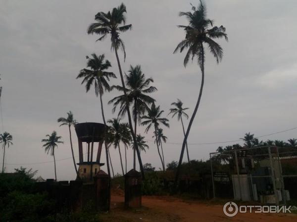 Деревня колва гоа фото и описание