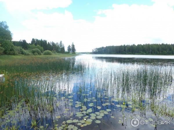 Озеро лучанское фото
