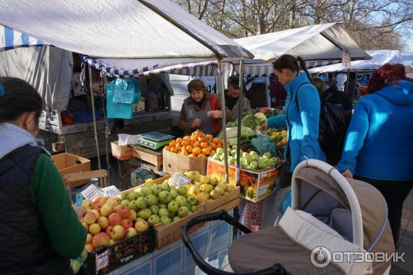 Рынок в геленджике отзывы и фото