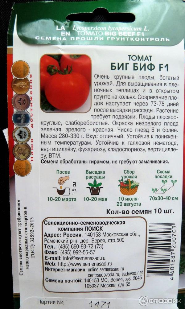сталина томат биг биф отзывы и фото мою голову самым