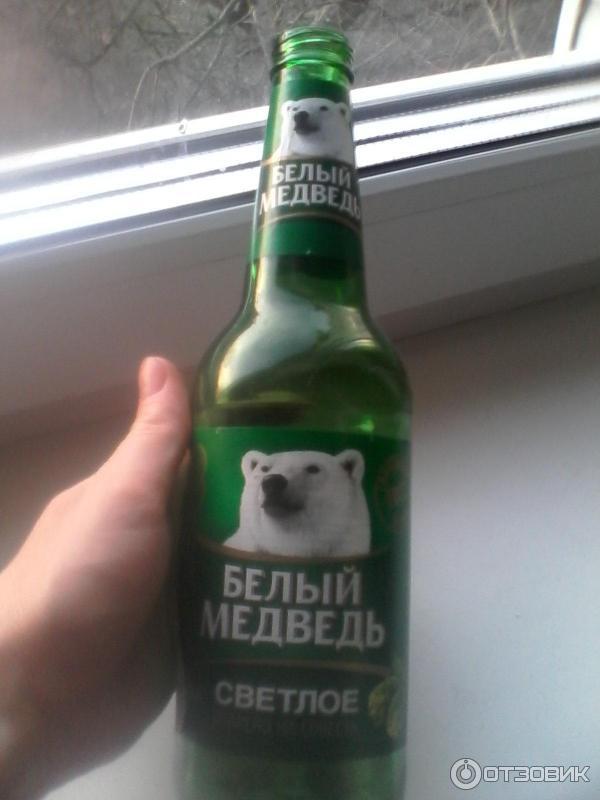 показала новых пиво белый медведь фото принадлежит