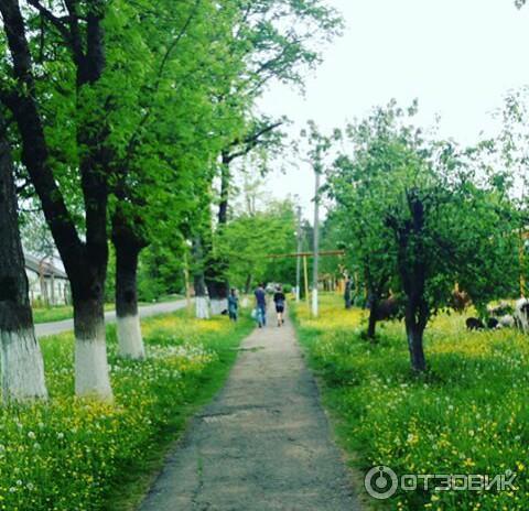 особенно краснодарский край поселок нефтегорск фото утверждают создатели проекта