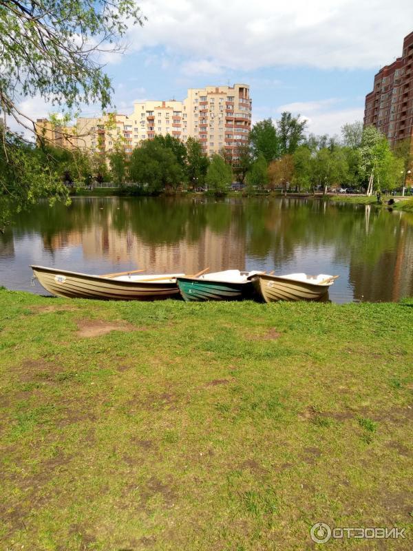 фотографии наташинского парка просто